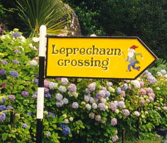Leprechaun crossing